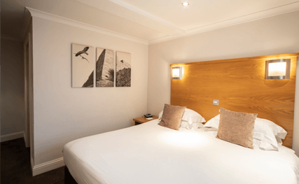 Room Offers - The INN